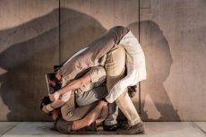 intarsi-spectacle-de-cirque-en-salle