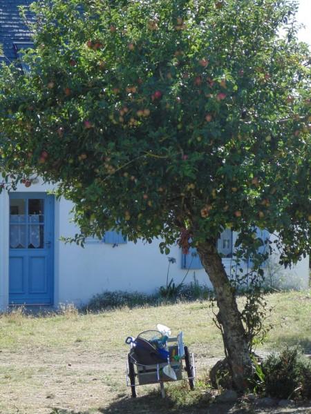 Hoëdic, le village