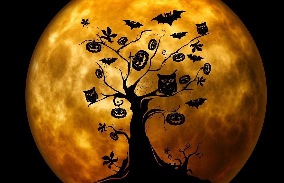 Sortie sp ciale halloween r cr atiloups - Image citrouille halloween ...