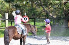 au-poney-magique-activite-ludique