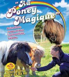 Au Poney Magique