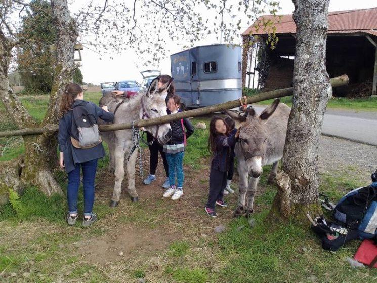 Association Copain Coop'âne