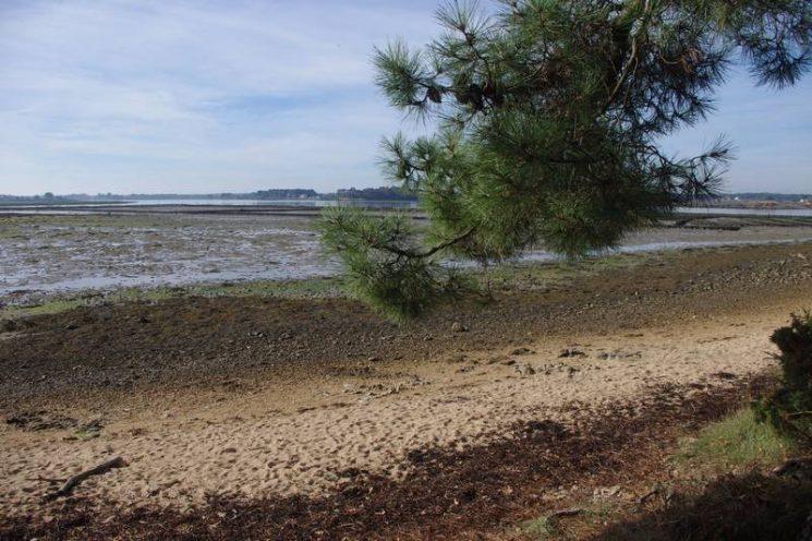 Balade avec un petit coin de sable