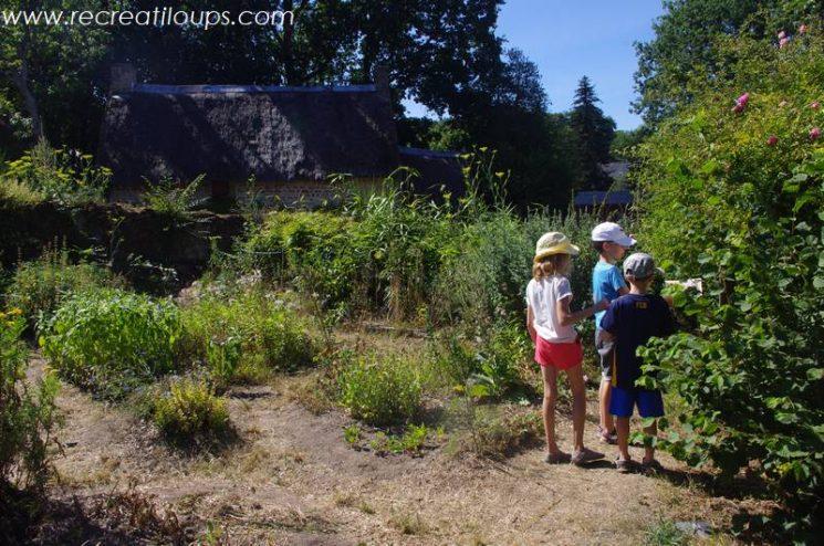 Reconnaissance de plantes au potager