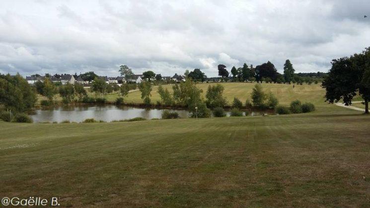 Des balades au bord des étangs