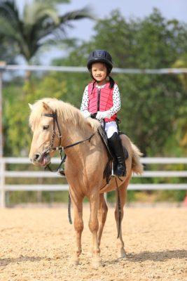 Stage D Equitation Vacances D Ete Recreatiloups