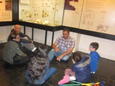 visite-guidee-a-petits-pas-musee-carnac