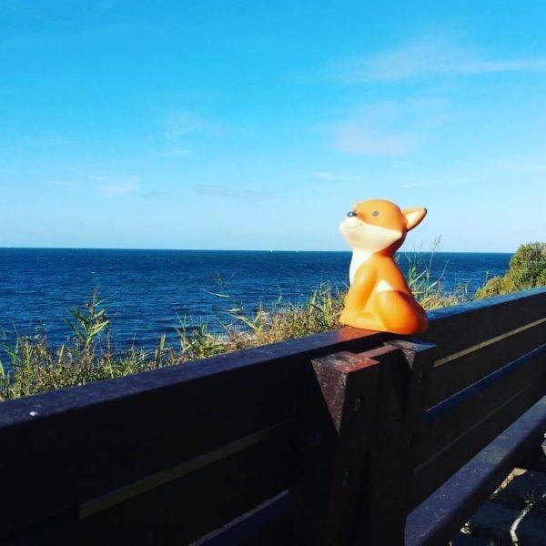 Foxy la mascotte du Petit Futé