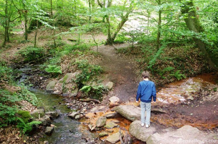 Balade pédestre au coeur de la nature