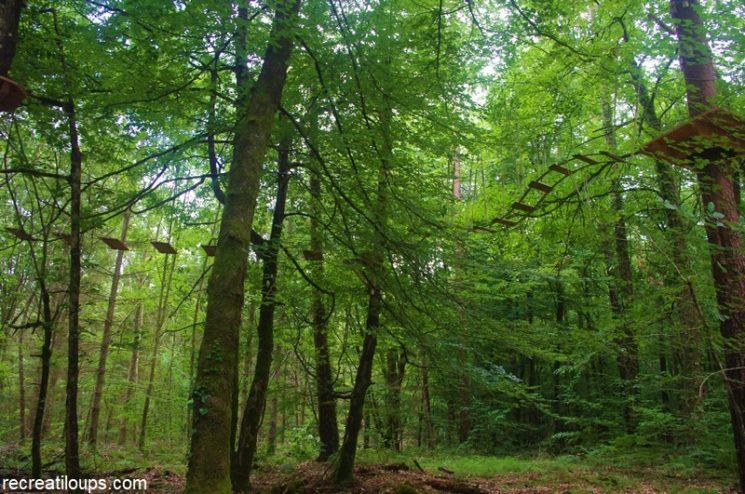 Des loisirs de pleine nature en Forêt de Camors